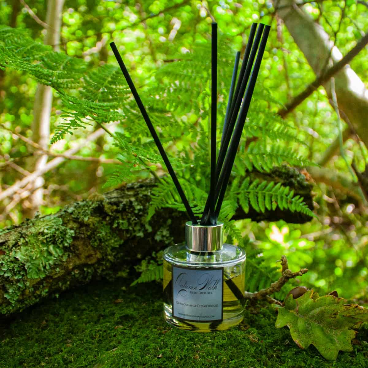 Autumn Walk diffuser outside amongst a mossy tree and fern leaves.