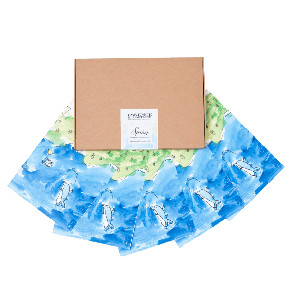 A4 Kraft Box labelled Spring with folded drawer liners fanned out in front featuring artwork by Willow Curnow.